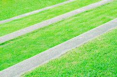 Green Grass with staircase and sidewalk Stock Images