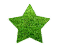 The Green Grass Star on white background Stock Photography