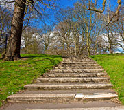 Green grass and steps against blue sky Royalty Free Stock Images