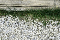 Green grass and stones Royalty Free Stock Photography