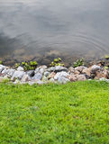 Green grass with stones and water Royalty Free Stock Photo