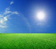 Green grass and sun under blue sky stock photo