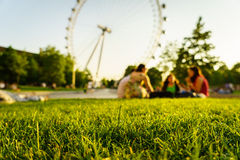 Green grass with London Eye Royalty Free Stock Photos