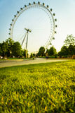 Green grass with London Eye Stock Photo