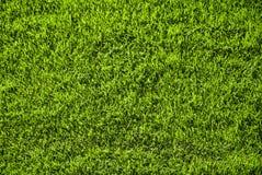 Green grass surface Stock Photos