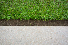 Green grass and terrazzo floor Royalty Free Stock Images