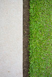 Green grass and terrazzo floor Royalty Free Stock Photo