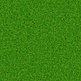Green grass texture. Abstract fresh green grass field texture background Stock Photo