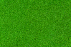 Green grass of texture for background Stock Images