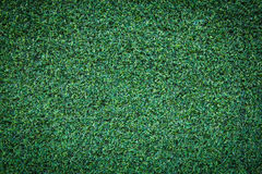 Green grass texture background beautiful. Grass abstract background and texture Stock Images