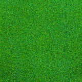 Green grass texture for background Stock Images