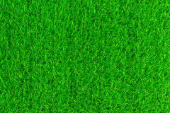 Green grass texture background eco concept Stock Photos