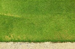 Green grass texture background of golf course with concrete area. Royalty Free Stock Photos