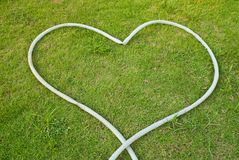 Green grass texture background with heart. Stock Photo