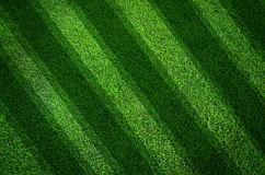 Green grass texture background And oblique lines Royalty Free Stock Photos