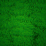 Green grass texture background Royalty Free Stock Photos