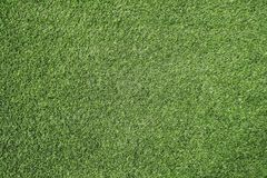 Green grass texture background Soccer field Stock Images