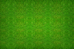 Green grass texture background for soccer sport or football spor Royalty Free Stock Photos