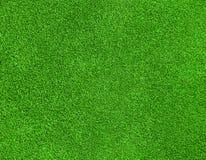 Green grass texture. Beautiful green grass texture on golf course Stock Images