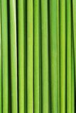 Green grass. Texture of close up Royalty Free Stock Images