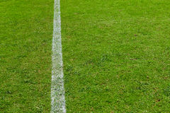 Green grass texture of a soccer field Stock Photos