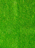 Green grass texture from Stock Image