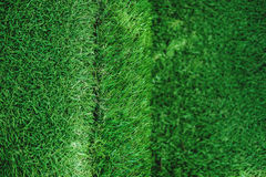 Green grass texture, turf stairs, selective focus shallow depth of field Royalty Free Stock Image