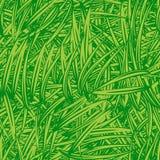 Green grass texture Royalty Free Stock Photos