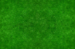 Green grass textured background Royalty Free Stock Photography