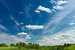 Green grass and tiny tree on the hill and the blue sky with white clouds Royalty Free Stock Photo