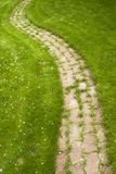 The green grass to the footpath running. Stock Photos