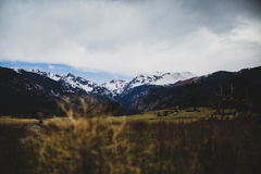 Green Grass on Top Black and White Mountain Under White and Blue Cloudy Sky Royalty Free Stock Image