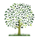 Green grass and tree vector Stock Images