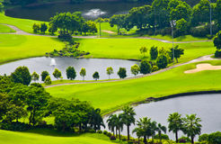 The green grass and trees on a golf course. Golf course in Guangzhou,China,with beautiful scenery Stock Images