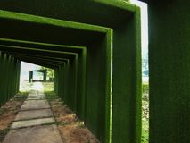 Green tunnel and the end of destination stock photos