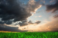 Green grass under blue and orange sky Stock Image