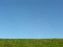 Green grass under blue sky