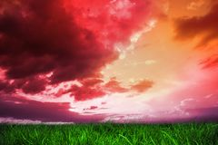 Green grass under red and purple sky Stock Images