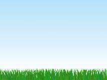 Green grass under sky. Vector illustration Royalty Free Stock Photos