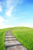 Green grass and up stairs Royalty Free Stock Photography