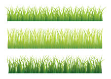 Green grass variation Royalty Free Stock Photography