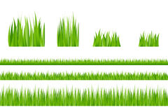 Green Grass. Vector. 3 backgrounds of green grass and 4 tufts of grass Stock Photos
