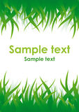 Green grass vector background. Vector background with green grass on top and bottom sides and place for text in center Royalty Free Stock Photos