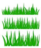 Green grass, vector illustration Royalty Free Stock Photography