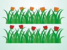 Green Grass Vector Illustration with Some Flower. Grass vector, grass cartoon, flower vector, flower cartoon, isolated grass vector illustration Royalty Free Stock Photo