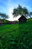Green Grass In The Village. Green Grass In The Carpathian Village Royalty Free Stock Photography
