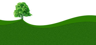 Green grass wave background Royalty Free Stock Photo