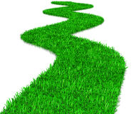 Green Grass Way Stock Photography