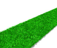 Green Grass Way Royalty Free Stock Photos
