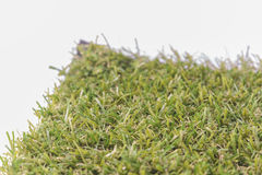 Green grass ,white background. Royalty Free Stock Photo